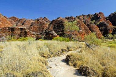 The path in Bungle Bungles (Purnululu) - Purnululu National Park, Australian landscape