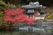 Královský palác se zahradou v Soulu v Jižní Koreji.