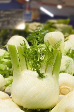 Fresh vegetables in supermarket