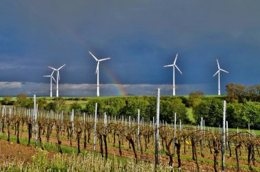 Wind turbines in green vineyard landscape against blue sky, alternative energy, new natural scenery, Header for website