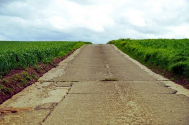 the way forward, road in the middle of green fields or grassland