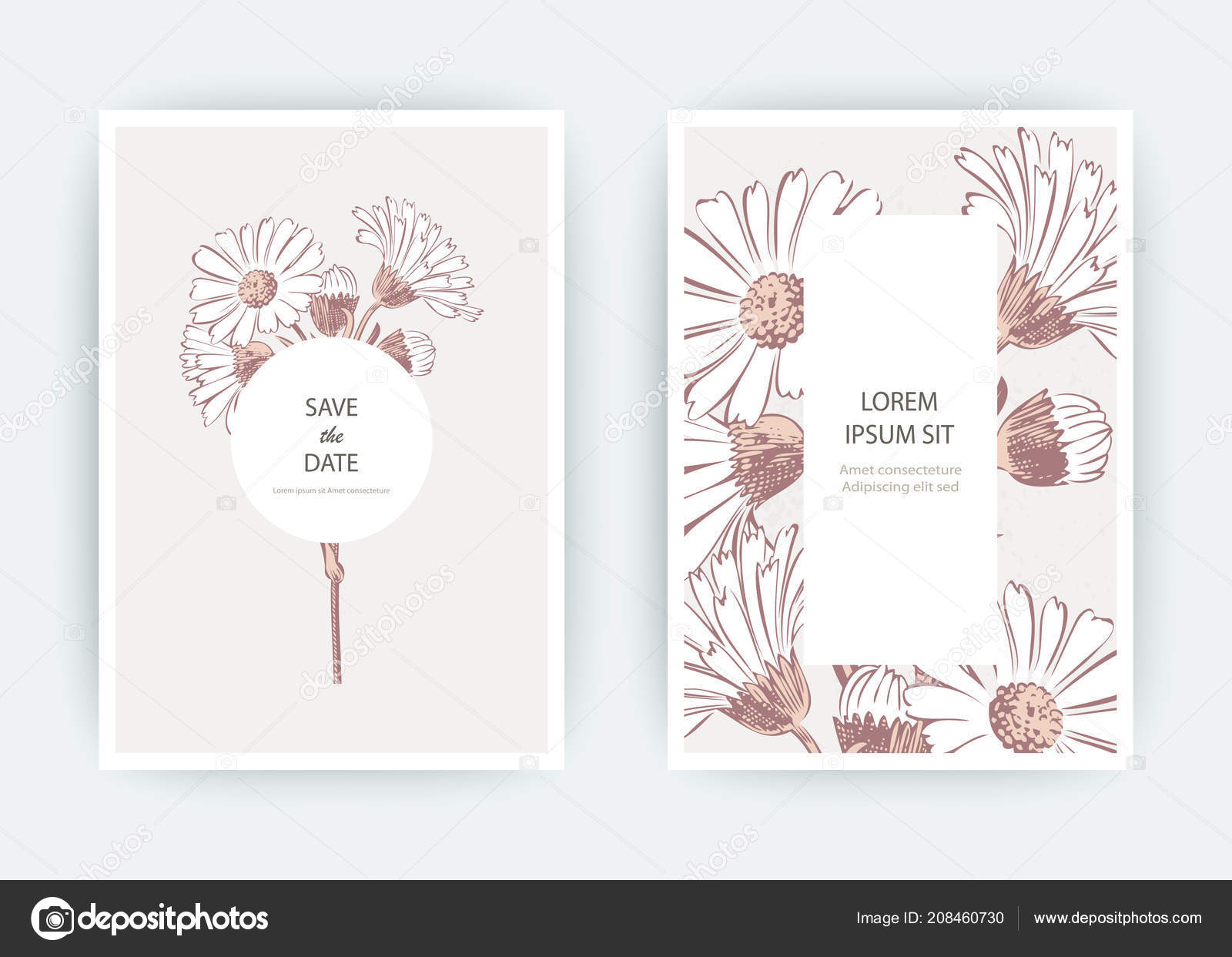 Card flowers calendula chrysanthemum chamomile daisy aster wedding wedding ornament minimalist pastel colors floral trendy poster invite vector decorative greeting card invitation design background vetor de cosveta stopboris Image collections