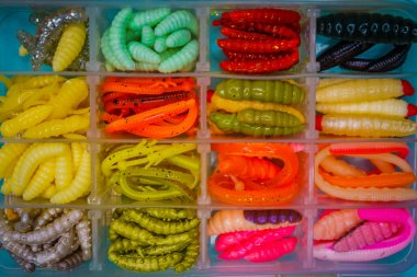 Silicone bait for trout