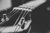 Fotografie akustikgitarre