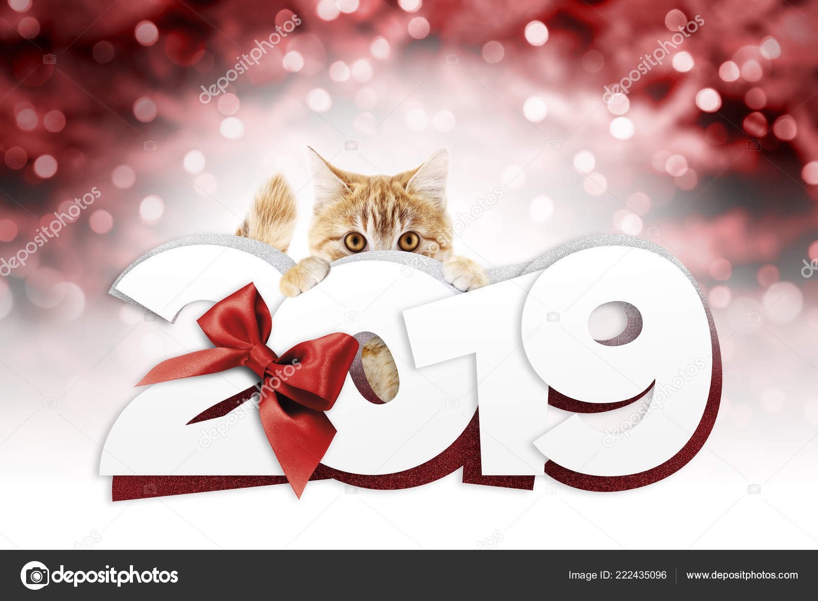 ginger cat showing happy new year 2019 text red ribbon stock photo