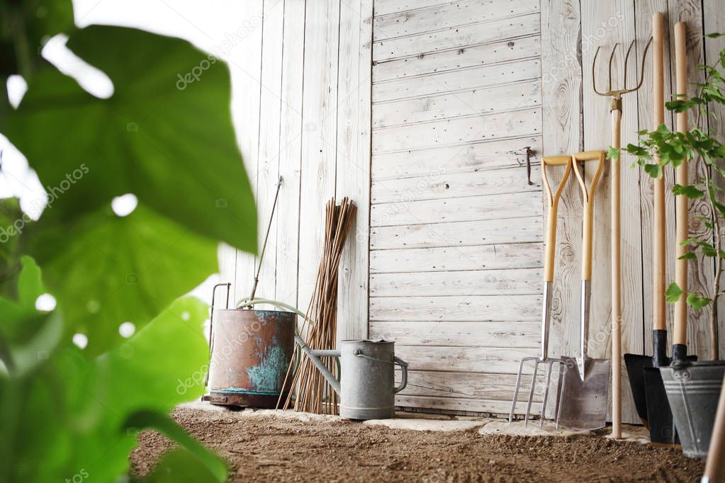 gardening tools on wooden white wall, equipment for vegetable garden , copy space background