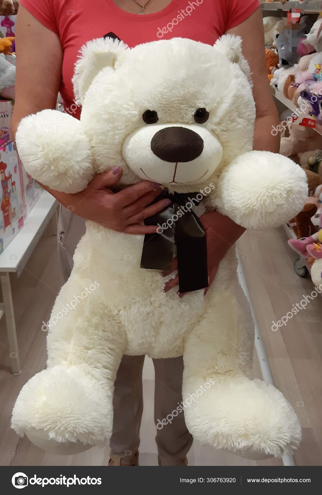 Hay Hay Chicken Stuffed Animal, Toy Shop Bought Big White Fluffy Bear Stock Photo C Agafja 306763920