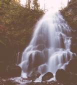 A beautiful fountain-like small waterfall in a forest