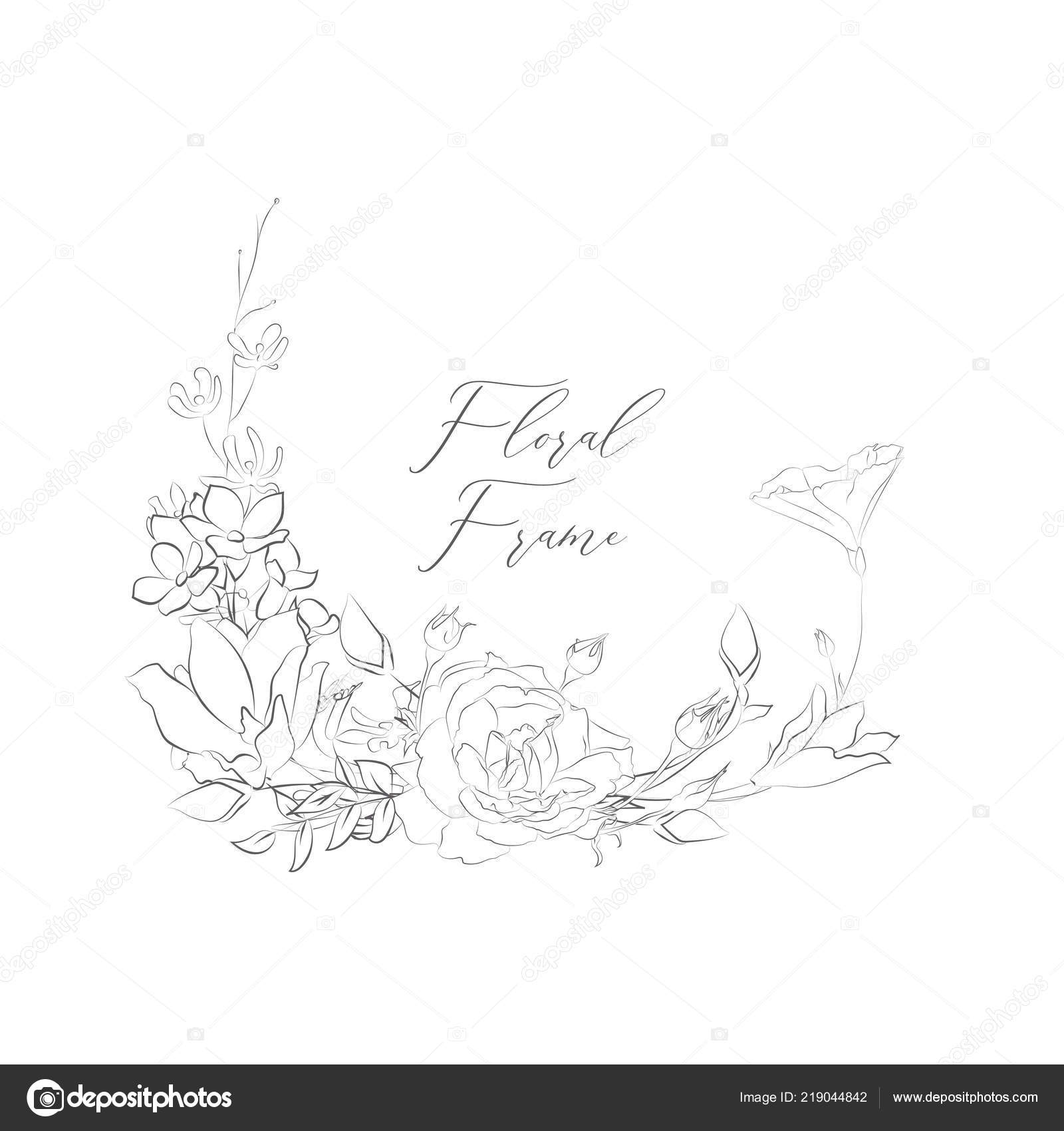 Flower Border Drawing Simple Simple Line Drawing Floristic Frame Border Delicate Drawn Flowers Rose Stock Vector C Oliafedorovsky 219044842