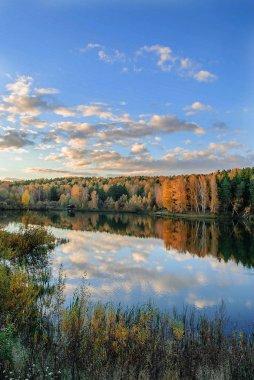 """Картина, постер, плакат, фотообои """"красивый пейзаж с осенним лесом и тихим озером . картины пейзаж"""", артикул 296271188"""