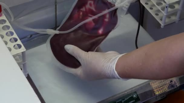 Nurse Mixing Donor Blood Sterile Plastic Blood Bag Donor Donates — Stock  Video © iBlackat #297152936