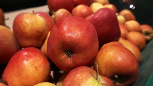Piros alma a pulton. Őszi szüret