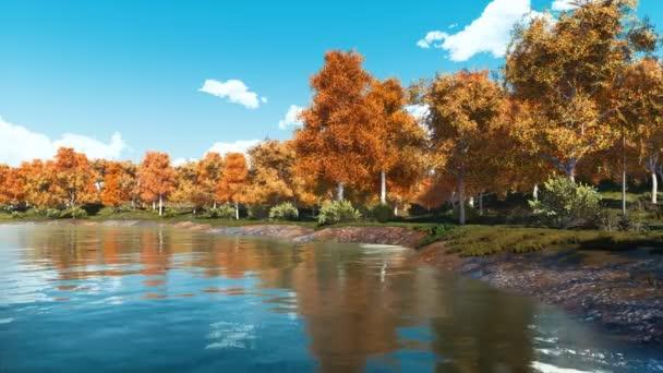 Klidné podzimní krajina s malebným barevné stromy na břehu jezera klid lesa ve dne. Bez lidí podzim sezóny realistické 3d animace vykreslen v rozlišení 4k