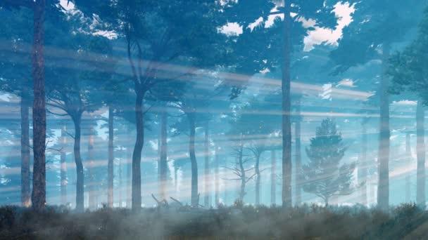 Zauberhafte Glühwürmchen schweben in der Luft in einem nebligen mystischen Wald mit Kiefern, die sich in untergehenden Sonnenstrahlen sonnen. Traumhafte Waldlandschaft im Cinemagraph-Stil 3D-Animation in 4k gerendert