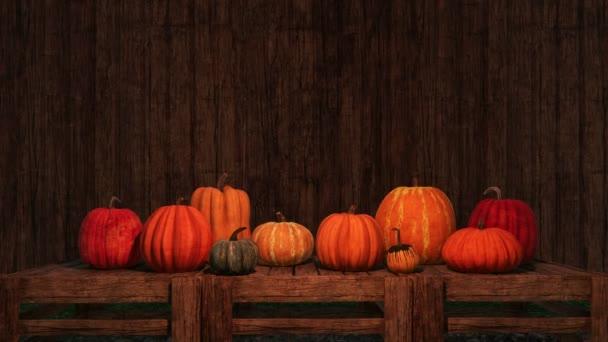 Podzimní Zátiší s skupinou různé barevné dýně na tmavé dřevěné pozadí se kopie prostoru. Slavnostní 3d animace pro díkůvzdání nebo Halloween svátky vykreslen v rozlišení 4k