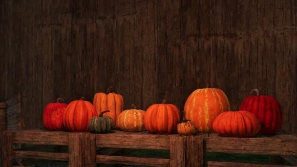 Různé barevné podzimní dýně rozloženy na dřevěných beden na tmavém pozadí rustikální dřevo se kopie prostoru. Slavnostní 3d animace pro díkůvzdání nebo Halloween svátky vykreslen v rozlišení 4k