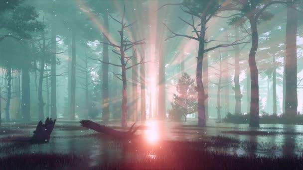 Természetfeletti tündér Firefly fények szárnyaló a ködös levegőben kísérteties erdei mocsár a kora reggeli vagy Alkonyat. Az emberek nem cinemagraph stílusban fantasy 3D animáció renderelt 4k
