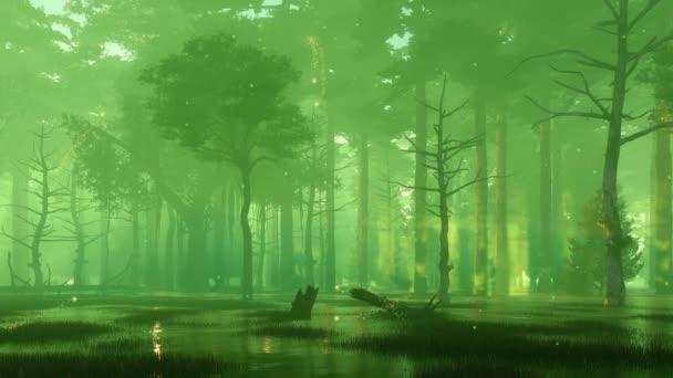 Tajemná lesní bažina s kouzelnými světlými světlými odletující vzduchem ve vzduchu v temné zamlžené noci. Bez lidí cinemv styl fantazie 3D animace vykreslená v 4k