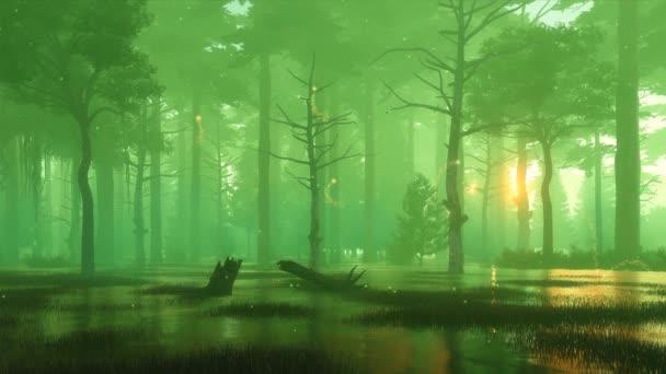 Pohádkové lesní scenérie s kouzelnou světlýřovou krajinou, která se vznáší v mlhavém vzduchu na strašidelném lesní bažině časně ráno nebo soumraku. Ve stylu cinem, fantazie 3D animace vykreslená v 4k