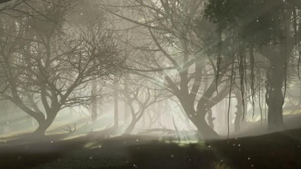 mystischer Wald mit letzten Sonnenstrahlen, die durch gruselige abgestorbene Baumsilhouetten und übernatürliche Glühwürmchenlichter in der Luft bei nebliger Morgendämmerung oder Dämmerung scheinen. Fantasie 3D Animation in 4k gerendert
