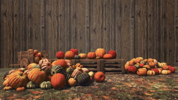 Podzimní dýně rozložené na dřevěných bednách a na venkově na venkově zemědělci na trhu na pozadí dřevěné zdi s kopírovacím prostorem. Díkůvzdání a Halloween koncept 3D animace vykreslené v 4k