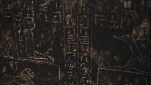 Close up staré hieroglyfy na černé zdi, starověké práce piktografický tvar pozadí kámen umění zvíře egypt hrob cestování mezník nil náboženství chrám civilizace tradiční kultura historie faraón