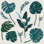 Szett trópusi levelek, és virágos elemek fehér alapon. Nyári kerttel és vadvirágokkal rajzolt kéz. tervezési keret vektoros botanikai elemekkel.