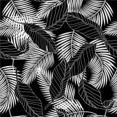 Sommer schwarz und weiß tropischen Palmenblättern nahtlose Muster. Vektordesign für Karten, Web, Hintergründe und Naturprodukte.