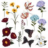 Sada vektoru krásné umělecké zářivé botanické zahrady s kvetoucími květinami a motýly. Barevné originální stylové květinové pozadí tisk, světlé duhové barvy na bílém.