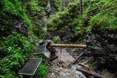 Národní park Slovenský ráj, stezka v lese. Krásná krajina