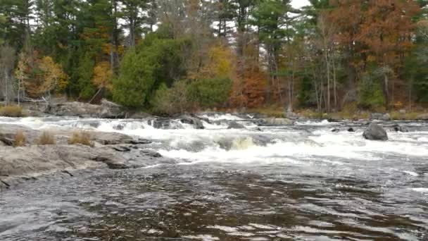 Lots of water cascading down the bedrock river bedin nice fall natural setting