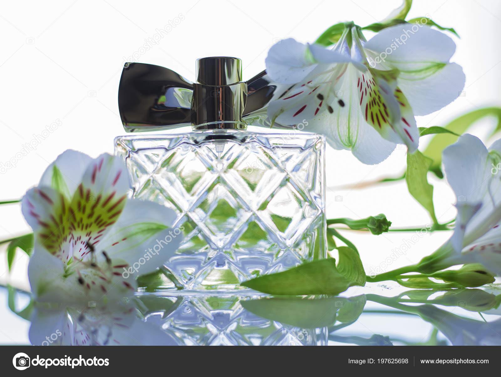 Perfume Bottle White Flowers Light Background Stock Photo