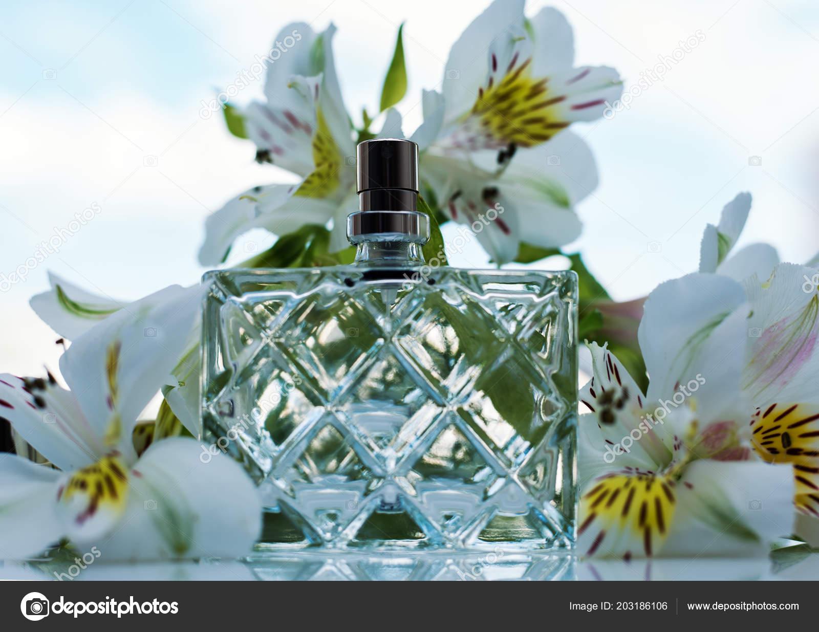 Female Perfume White Flowers Stock Photo Martyna1802 203186106