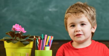 Kid boy in classroom near flower in pot and pencils, chalkboard on background, close up, copy space. Toddler cute and cheerful ready to study. Child in school, kindergarten. Education concept