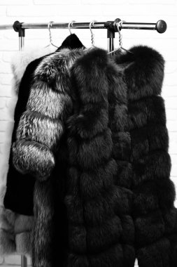 Fashionable luxurious waist coats of fur hanging on rack on golden hangers on brick wall studio background stock vector