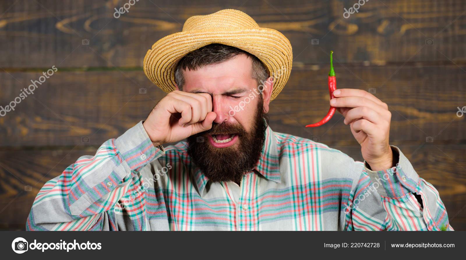 Coltivatore che presenta caldo peperoncino su fondo di legno. Concetto  della raccolta di pepe. Rustico contadino in cappello di paglia