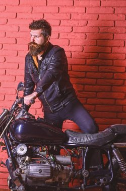 Hipster, brutal biker on serious face in leather jacket gets on motorcycle. Masculine passion concept. Man with beard, biker in leather jacket near motor bike in garage, brick wall background