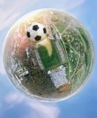 Fotografie Mistrovství světa. Planet fotbal. Panoramatický záběr na stadionu a míč