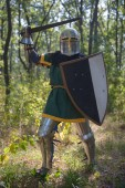 Medieval Knight in armor in the woods