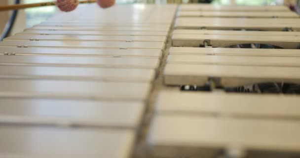 Close up of man hands playing percussion instrument. metal xylophone focused. bright clear light reflecting. beautiful percussion