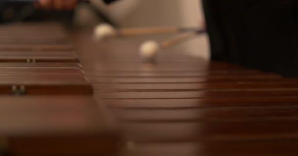 Közelkép zenész kezét játszik xilofon