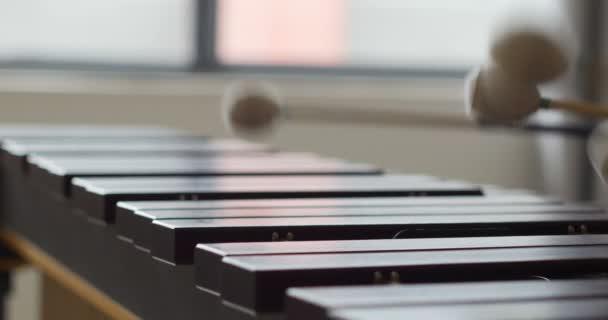 közeli felvétel a marimba billentyűzetről. ütőhangszeres kezek xilofonoznak. sok fa bárok és gyors mozdulatok a zenész