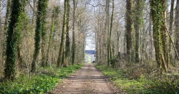 Prázdný les se vzdálenými dveřmi. způsob, jak uniknout z tohoto lesa. le lude Francie 1-3-19