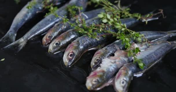 Frissen grillezett szardínia fehér tálcán. Fehér háttér. Tipikus mediterrán konyha. Mediterrán gasztronómia. Egészséges étel. Tipikus spanyol és portugál ételek. Fénymásolási hely.