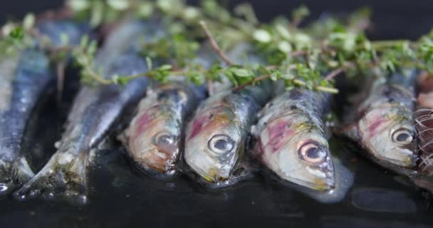 Sardinen kochen auf einem offenen Grill: Espetos - Spieße mit Sardinen im Feuer. Gebratene Sardinen mit Rosmarin und Kräutern als Nahaufnahme auf einem modernen Designteller mit Kopierraum