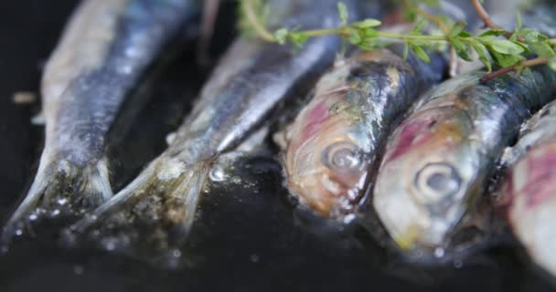 Grilled sardines in a herbal lemon marinade on a grill plate. Grilled food, barbecue. sardines to the fire on the beach