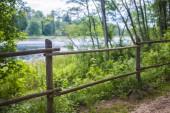 Fotografia Una vista della strada attraverso la foresta verde e un lago della foresta in una giornata di sole estivo, Lettonia