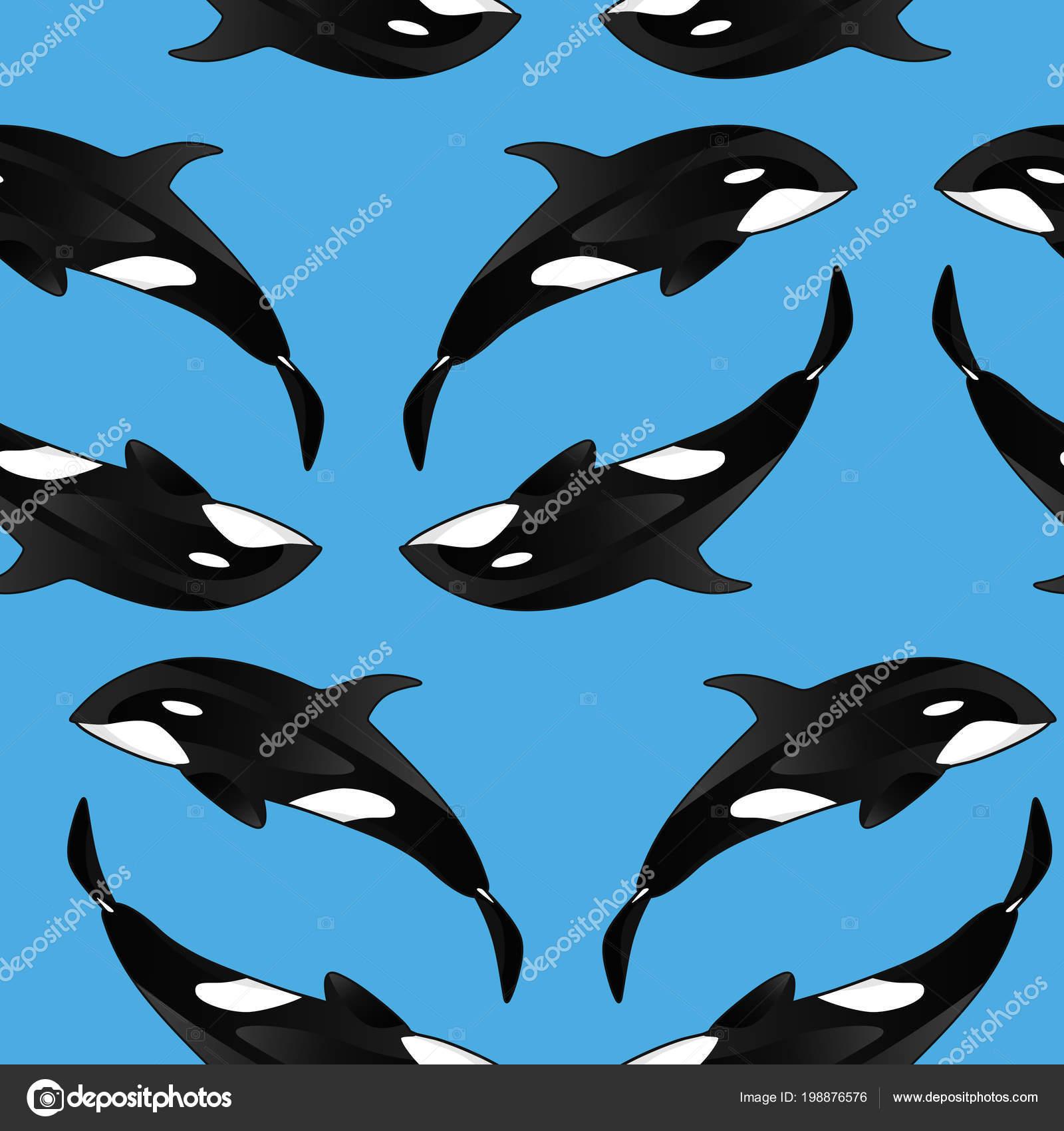 Texture Transparente Avec Les Orques Fond Extensible Modele