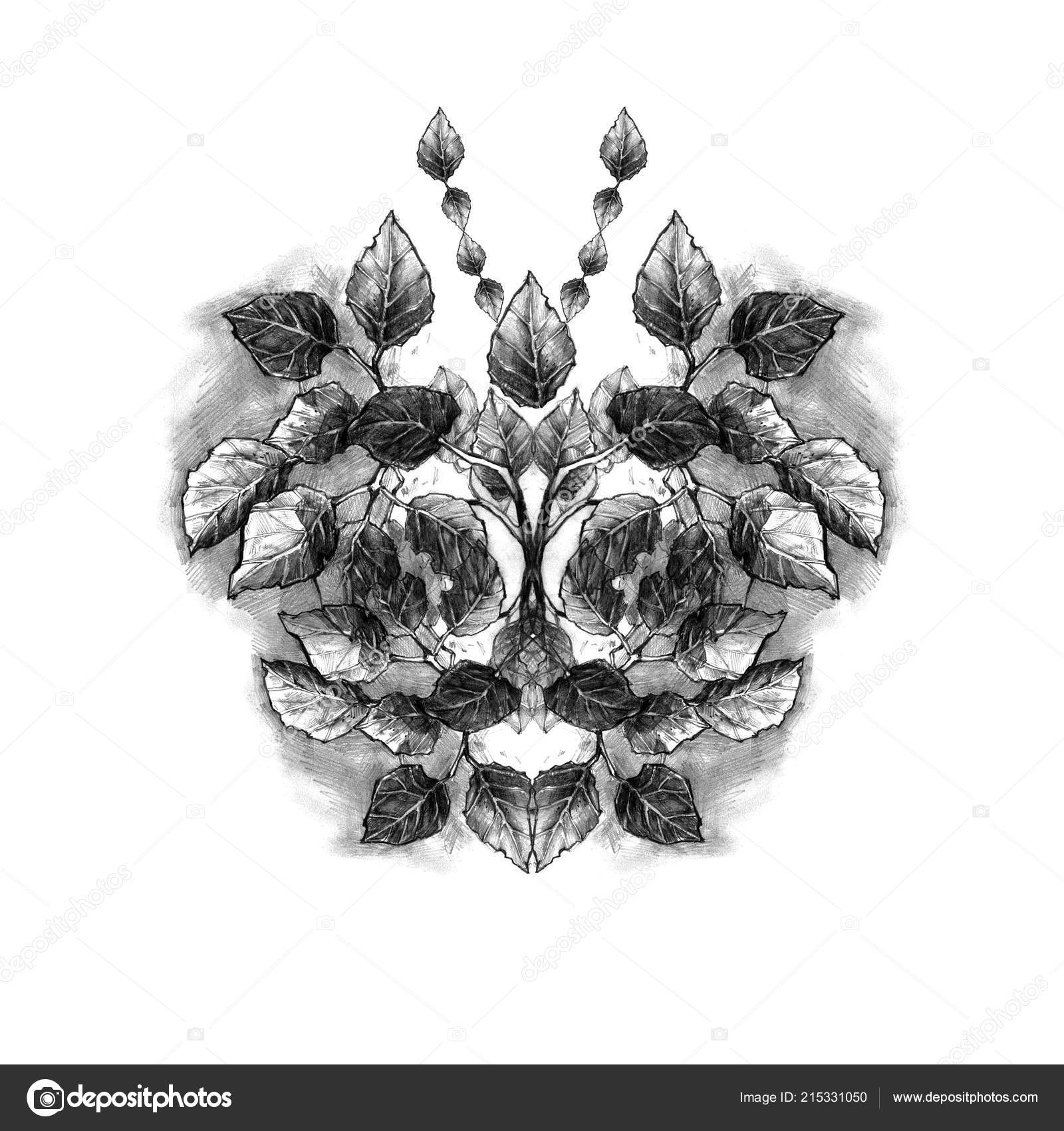 Rucne Kreslenou Listy Slozeni Podobe Motyla Prirodni Tuzka Ilustrace