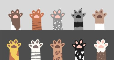 Fluffy cat paws collection. Set of various cute kitten foot silhouettes isolated on gray and white background. Animals and pets concept. Vector illustration in cartoon style icon